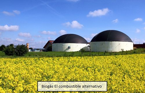 Biogás: El combustible alternativo